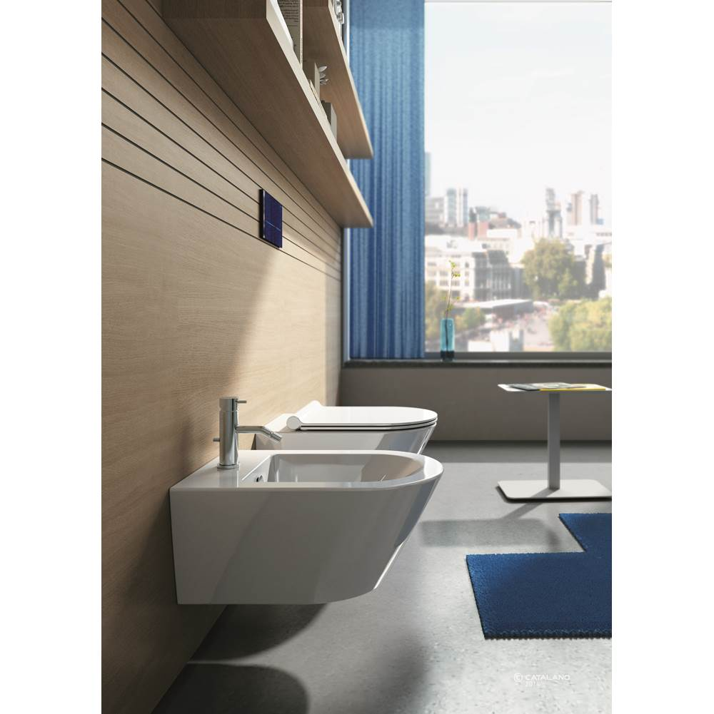 Catalano Wall Mount Bidet item BS55N