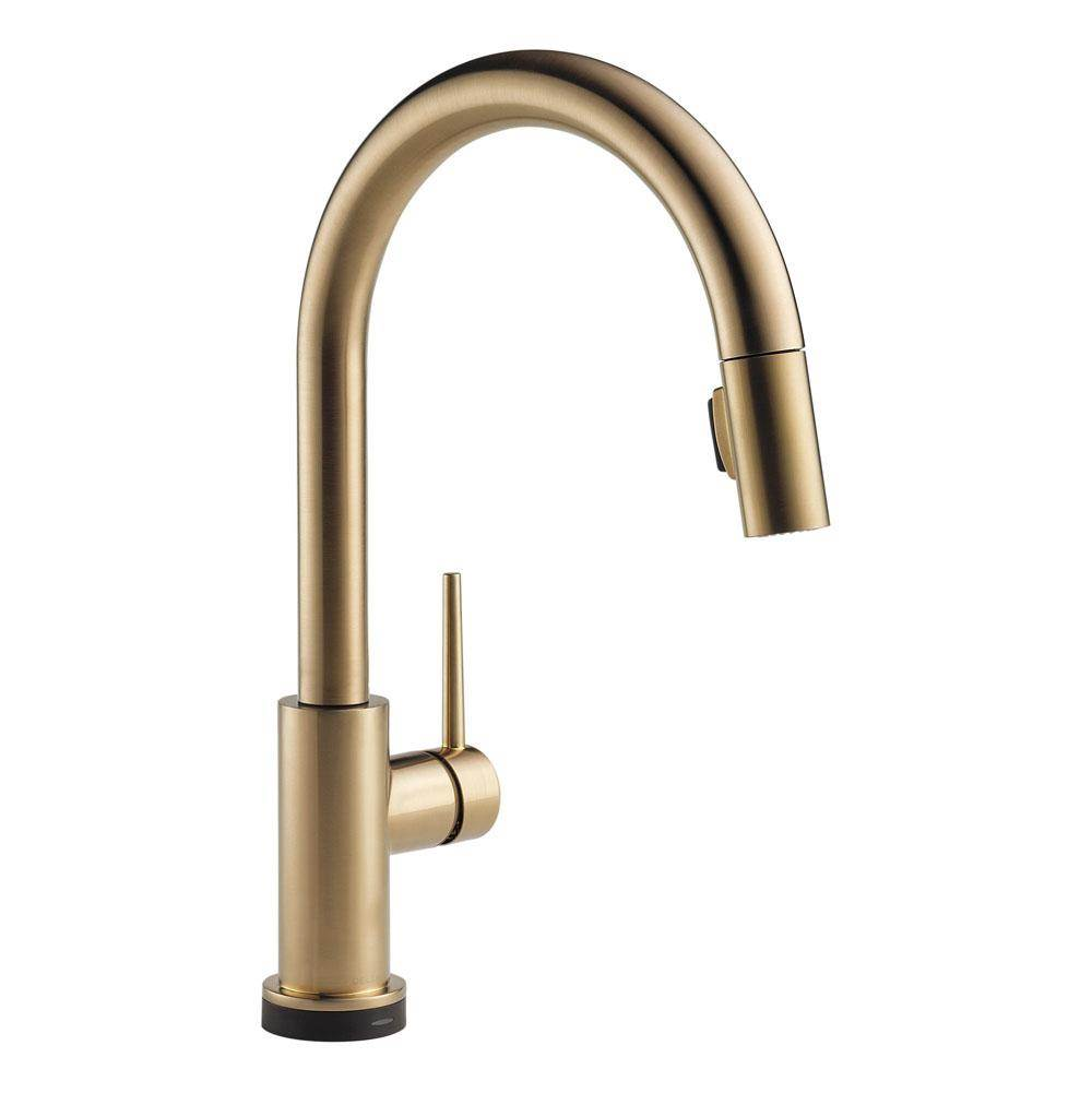Delta Canada Kitchen Faucets The Water Closet Etobicoke
