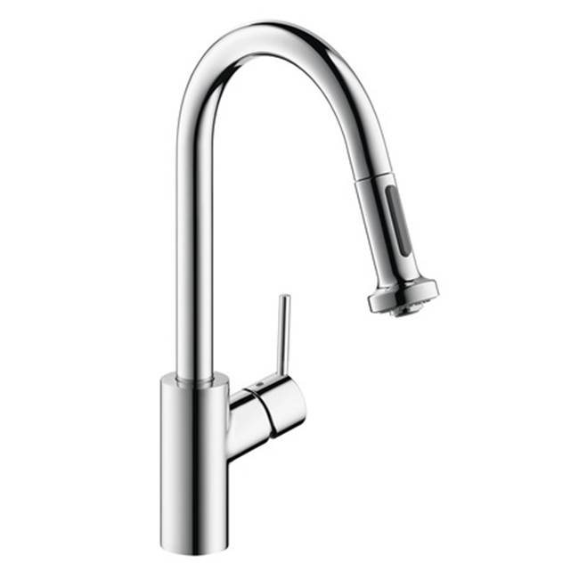 Hansgrohe Canada Single Hole Kitchen Faucets item 14877001