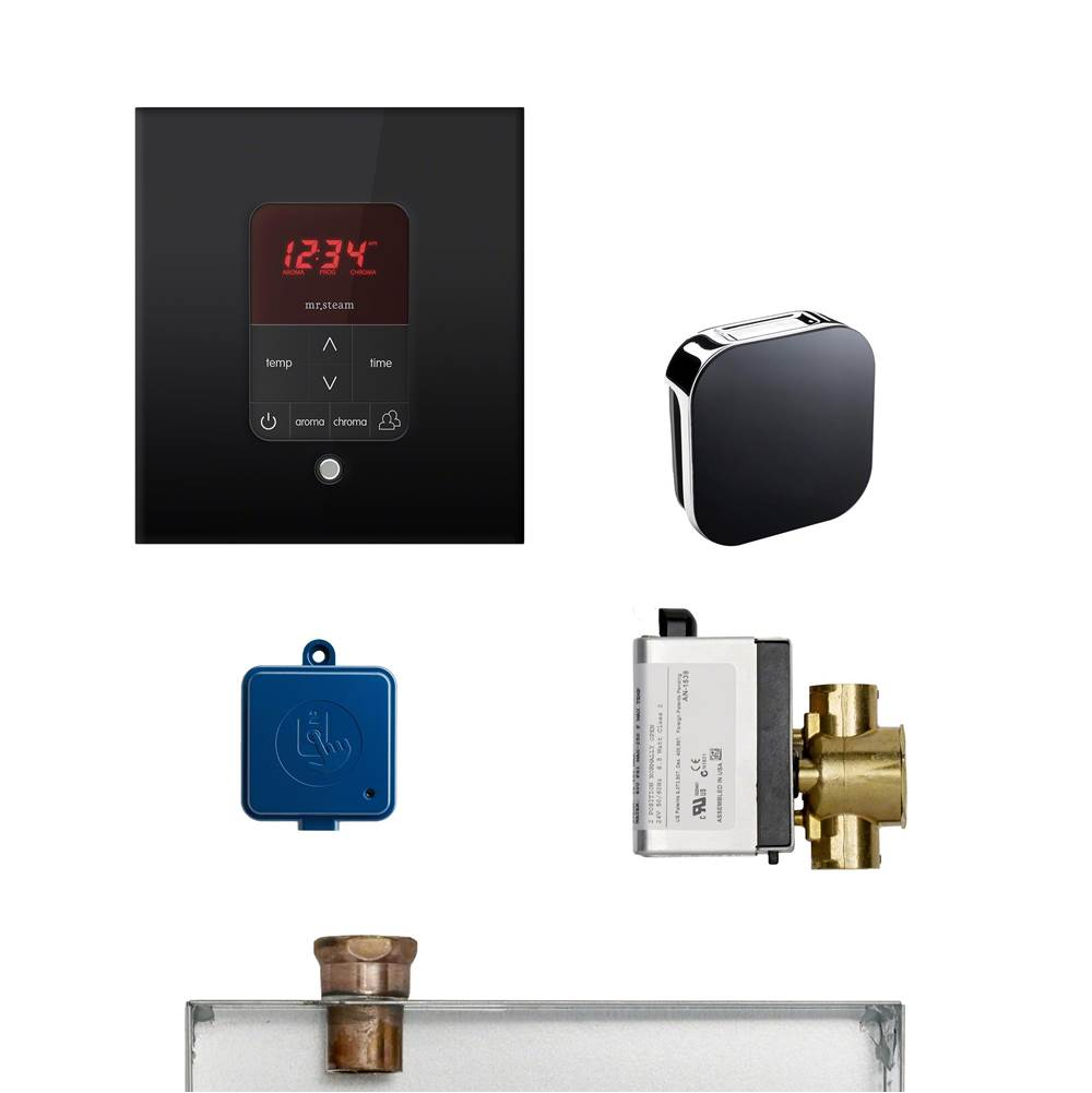 Mr. Steam  Steam Shower Control Packages item MS-BUTLERL-1SQ BL